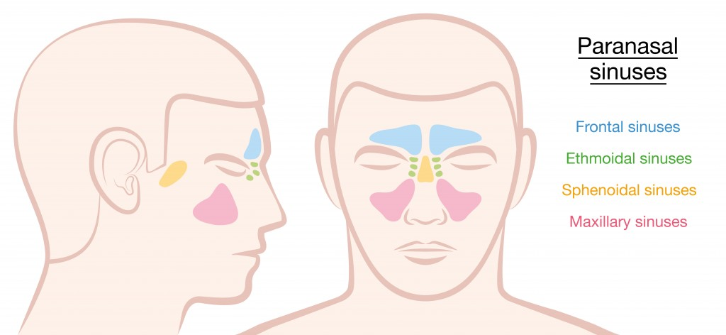 Sphenoid Sinusitis and Balloon Sinuplasty - Balloon Sinuplasty Surgery